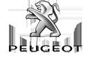 فروش قطعات و آپشن پژو PEUGEOT